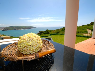 Palm - Beautiful 3 bedroom apartment with sea view private terrace and garden